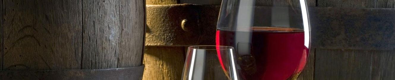 servicios-consultoria-vitivinicola-3