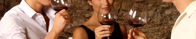 servicios-consultoria-vitivinicola-4