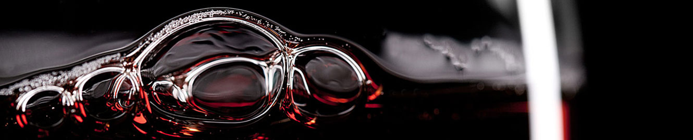 servicios-consultoria-vitivinicola-5